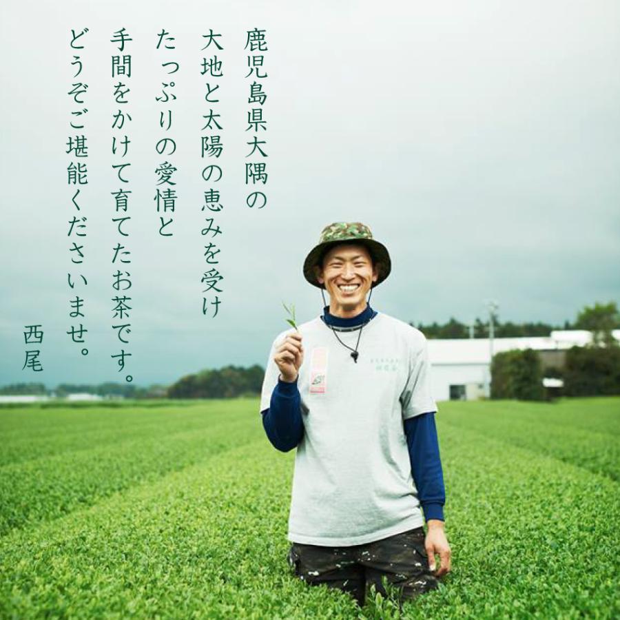 鹿児島 かのや深蒸し茶 100g さえみどりブレンド 荒づくり仕上げ|nishio-cha|06