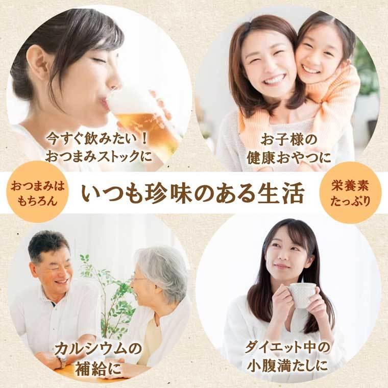 鮭スライス 95g 1000円 珍味 おつまみ 鮭とば サケ 乾き物 お取り寄せ ランキング 酒の肴 業務用 訳あり 大袋ファミリーサイズ nishizawach 06