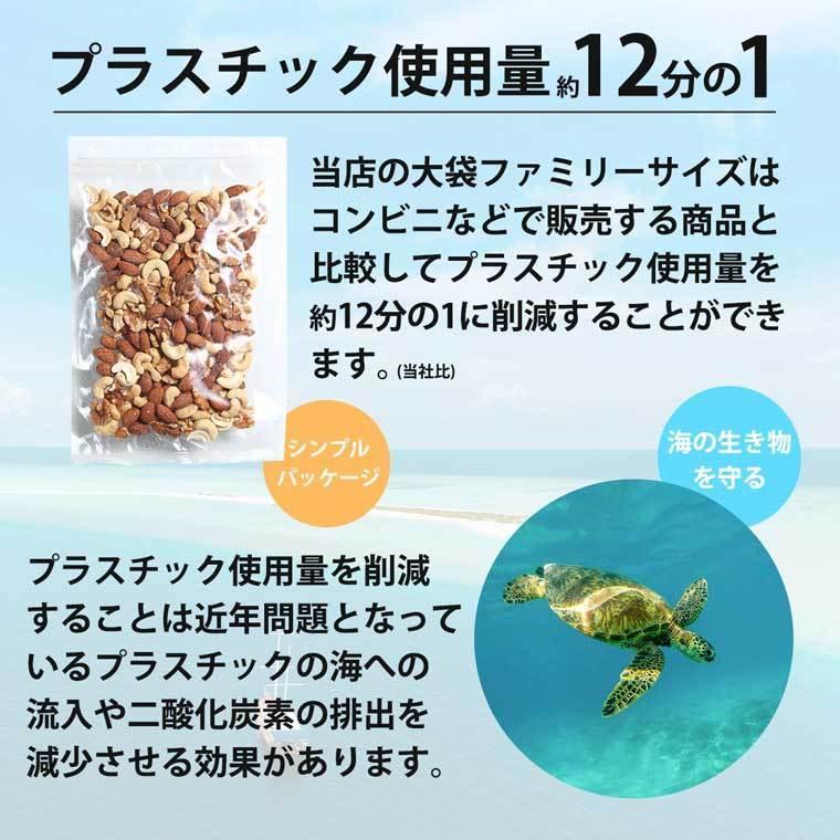 鮭スライス 95g 1000円 珍味 おつまみ 鮭とば サケ 乾き物 お取り寄せ ランキング 酒の肴 業務用 訳あり 大袋ファミリーサイズ nishizawach 09