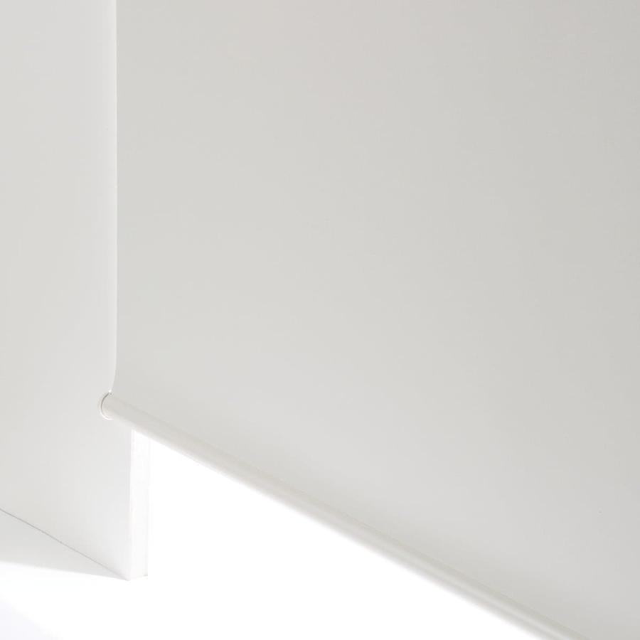 遮光 スリムタイプ 全品最安値に挑戦 ロールスクリーン チェーン式 ドルフィンWH 30X180 ニトリ 玄関先迄納品 新発売 1年保証