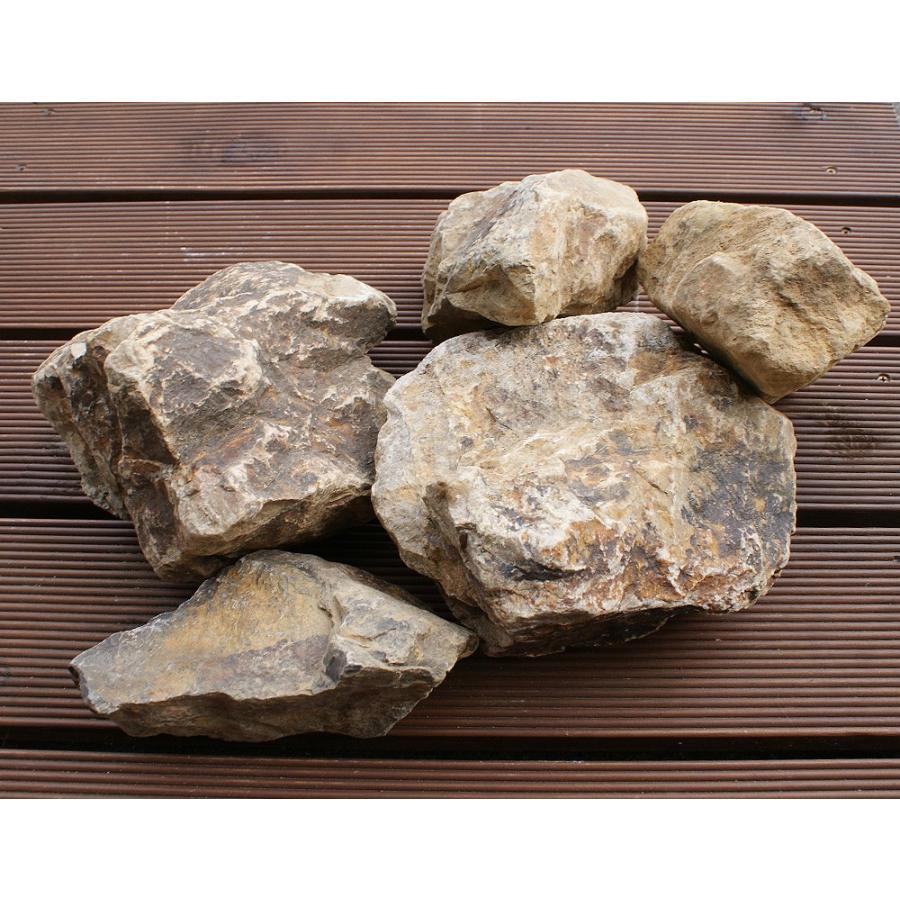 おがせ石 日本産 約10kg(目安:約5〜7個程度) :GDS-18:庭雑貨 ...