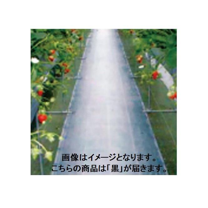 防草シート ダイオグランドシート抗菌剤入 黒 長さ100m×幅200cm