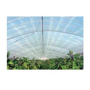 農ビ ノンキリースベールH(原反) 厚さ0.05mm 幅185cmX長さ100m