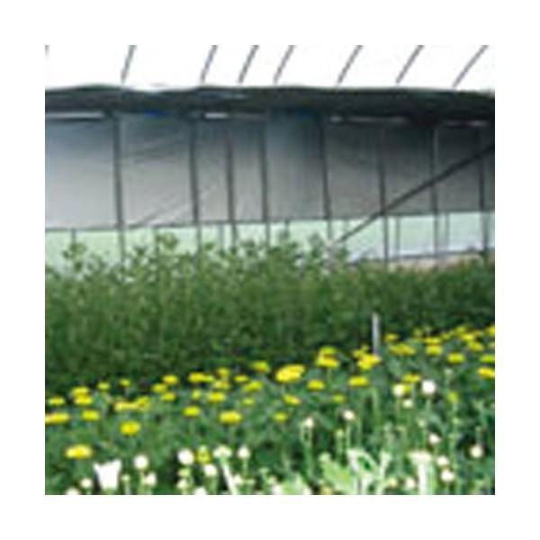 シルバーポリ保温用 長さ100m×厚さ0.05mm×幅135cm