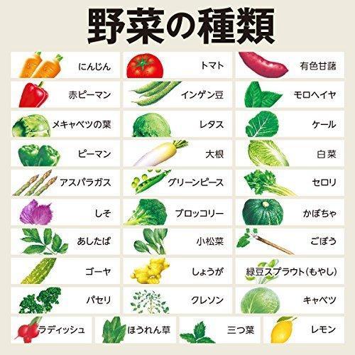 伊藤園 1日分の野菜 900g×3本|nocciola|04