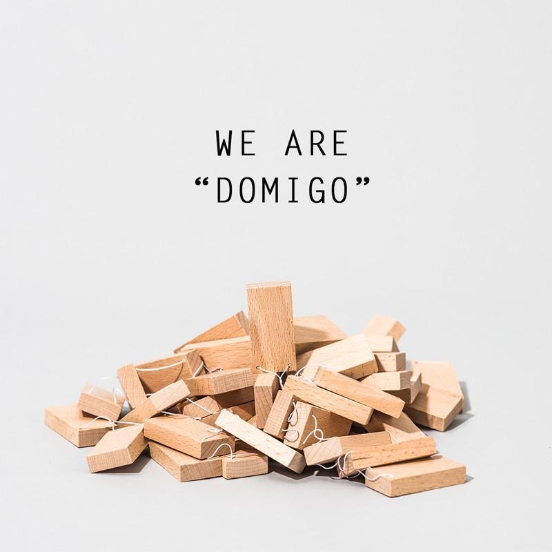 木のおもちゃ DOMIGO(ドミゴ)プレゼント ノベルティ 積み木 ドミノ 知育玩具 nochida 11