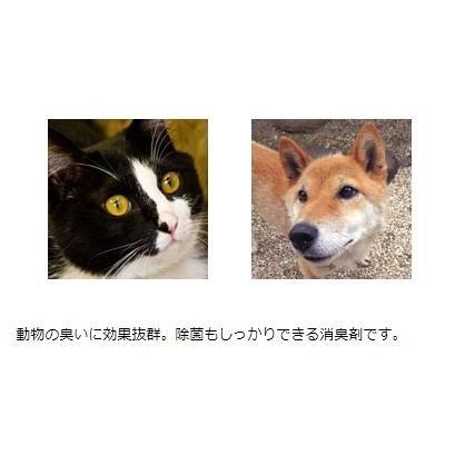 ペット消臭剤 猫 犬のオシッコ臭 アンモニア臭の除去 業務用 強力ペット消臭剤 P-1 ボトル 1リットル 無香料|noguchi-shouji|02