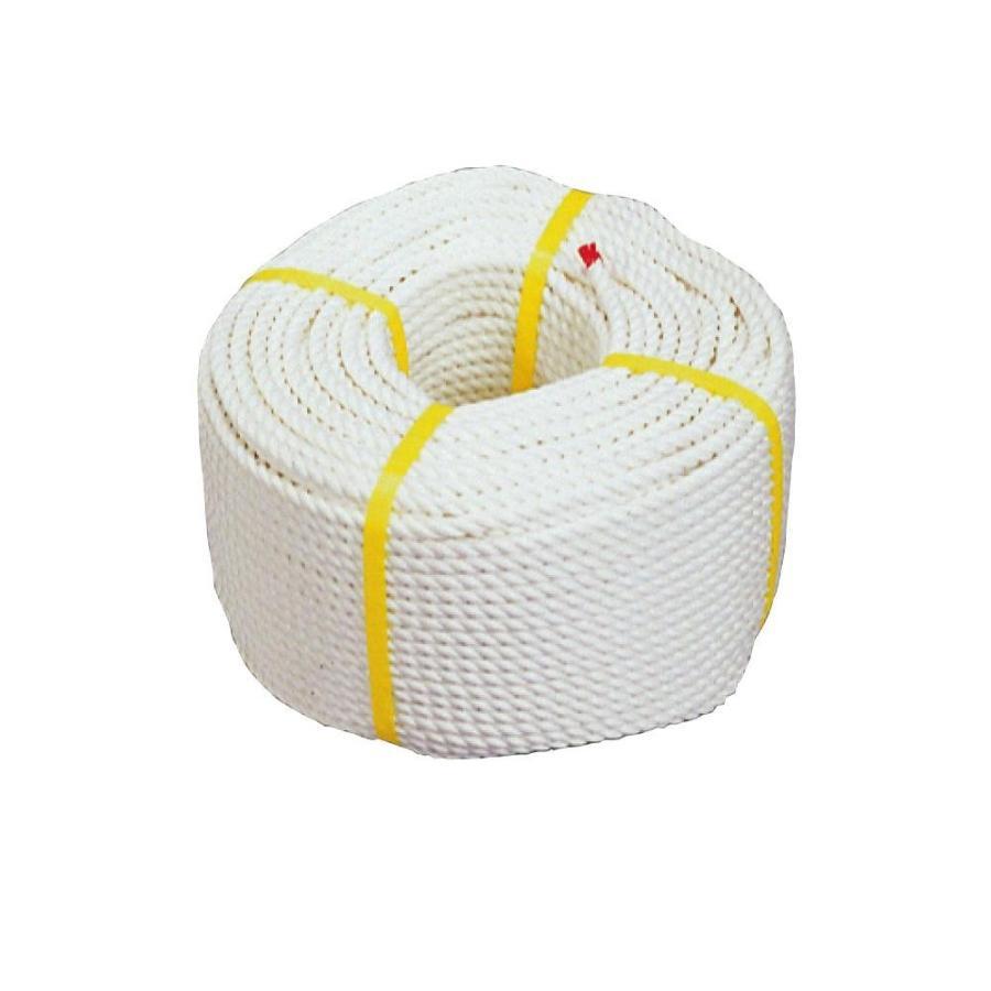 デンサン クレモナSロープ10×100 DPK-1051 送料無料  メーカー直送、期日指定不可、ギフト包装不可、返品不可、ご注文後在庫在庫時に欠品の場合、納品遅れや