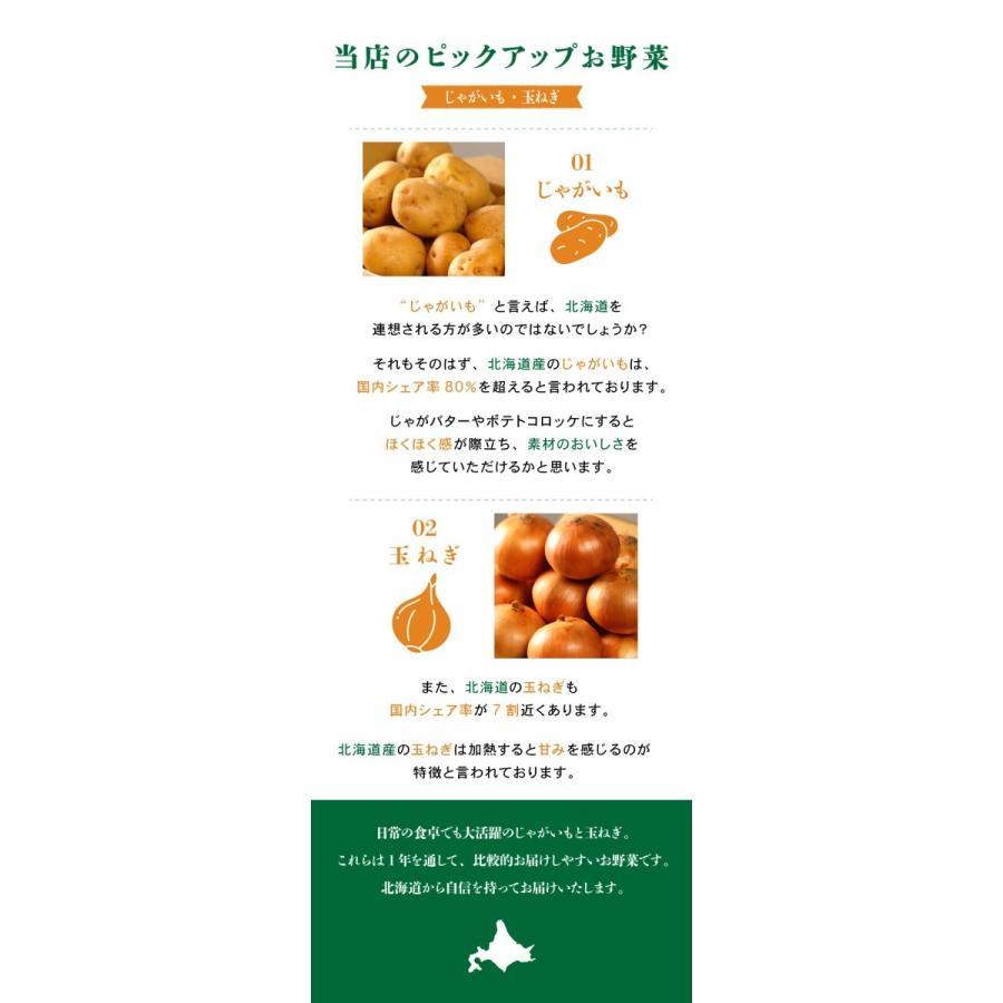 北海道産 野菜セット 旬の新鮮お野菜詰め合わせ 9品種以上 100サイズ 調理しやすい常備野菜がメインのつめあわせ|north-on-table|06
