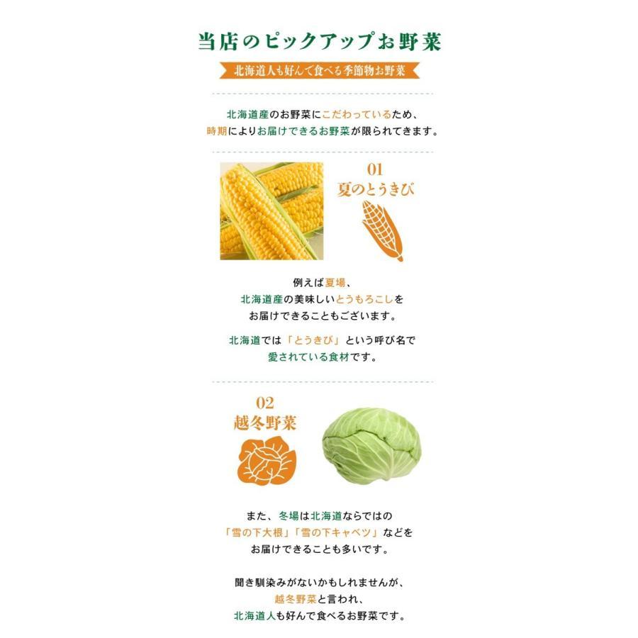 北海道産 野菜セット 旬の新鮮お野菜詰め合わせ 9品種以上 100サイズ 調理しやすい常備野菜がメインのつめあわせ|north-on-table|07