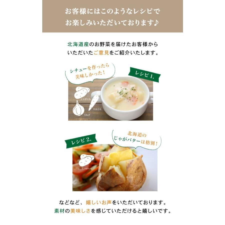北海道産 野菜セット 旬の新鮮お野菜詰め合わせ 9品種以上 100サイズ 調理しやすい常備野菜がメインのつめあわせ|north-on-table|08