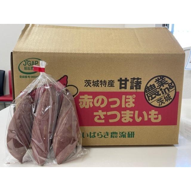 農流研 野菜セット nouryuken 08