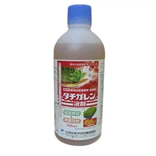 タチガレン液剤 500ml 20本入り1ケース