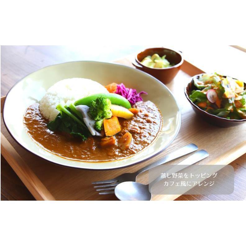 nutrth  SPICE CURRY  豚肉と野菜のやさしいカレー 210g|nutrth|04