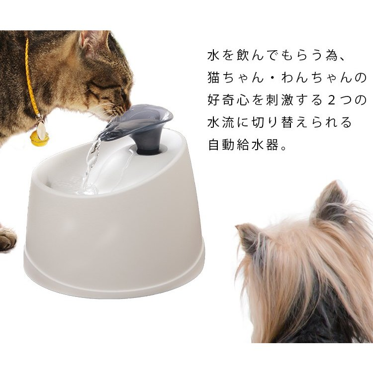 給水機 ペット用 猫用 猫用 自動給水機 ペット用品 飲み水 ペット用自動給水機 PWF-200 アイリスオーヤマ|nyanko|05