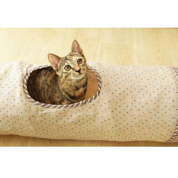 猫 おもちゃ 猫用 玩具 ペット ペット用おもちゃ トンネルおもちゃ カシャカシャ キャットトンネル 人気 おすすめ とんねる|nyanko|04