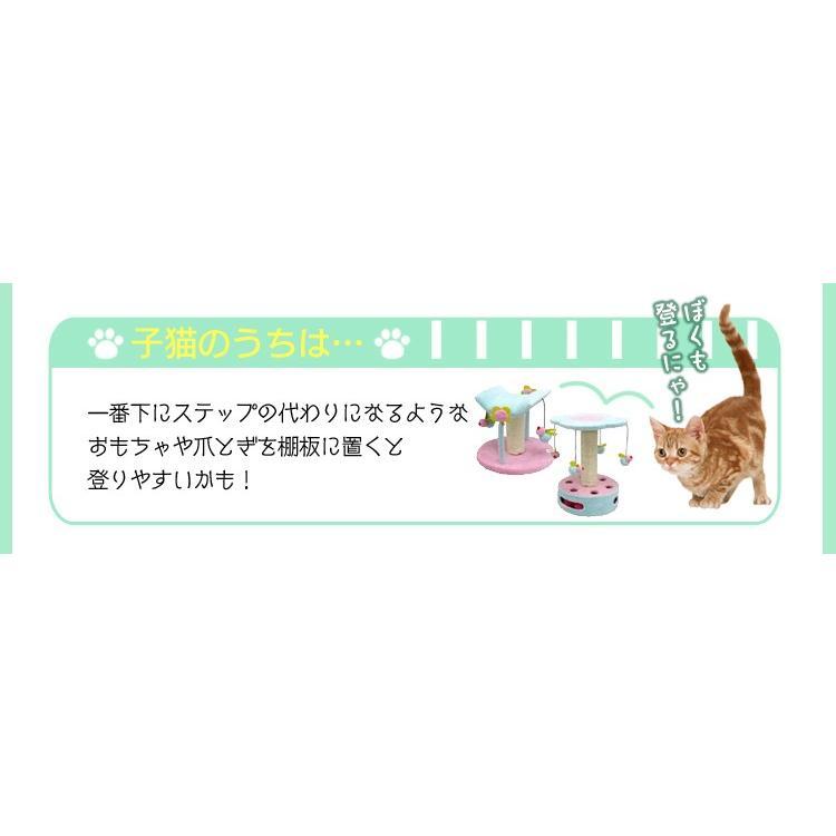 猫 ケージ ペットブラシ付キャンペーン ミニキャットケージ PMCC-115 アイリスオーヤマ サークル コンパクト ペットケージ 猫用品 nyanko 12