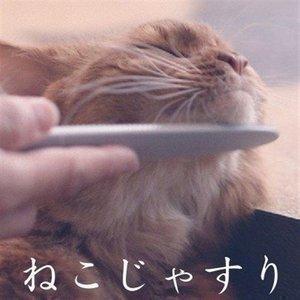 ねこじゃすり ワタオカ 猫用 ブラシ コーム 毛づくろい 猫ブラシ コミュニケーションブラシ おもちゃ|nyanko