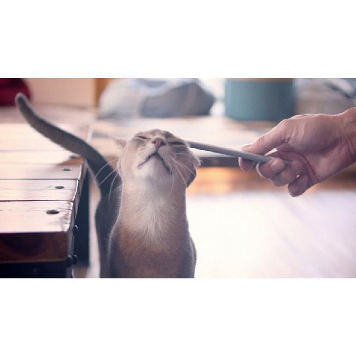ねこじゃすり ワタオカ 猫用 ブラシ コーム 毛づくろい 猫ブラシ コミュニケーションブラシ おもちゃ|nyanko|03