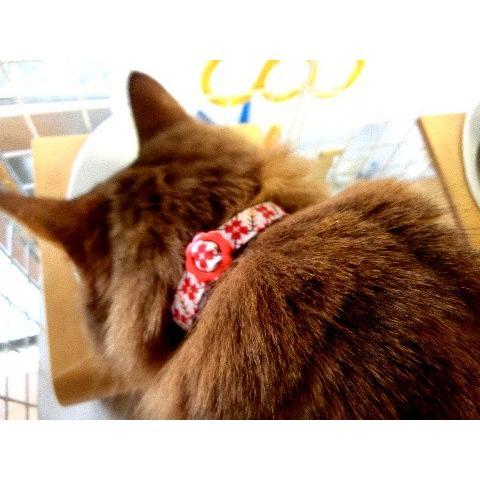 猫 ネコ ねこ キャット 首輪 安全バックル 軽い 負担少ない 手作り ソフト (猫用首輪 なでしこ)|nyanpakusengen|05