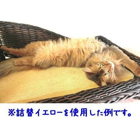 猫 ネコ ねこ キャット 爪とぎ つめ 砥ぎ 色付き とぎたいにゃん レフィル 詰め替え (とぎたいニャーン! 詰替2本セット) nyanpakusengen 06