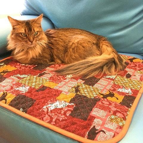 猫 ネコ ねこ キャット マット ベッド キルティング 手作り (正方形クッションマット)|nyanpakusengen|15