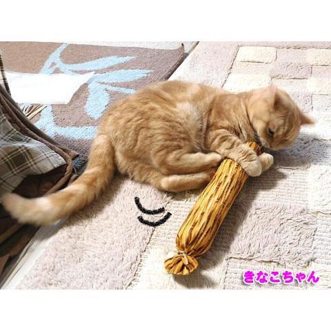 猫 ネコ ねこ キッカー おもちゃ マタタビ またたび 国産 天然 けりぐるみ ケリケリ わら納豆 (わらニャッ豆)(719) nyanpakusengen 05