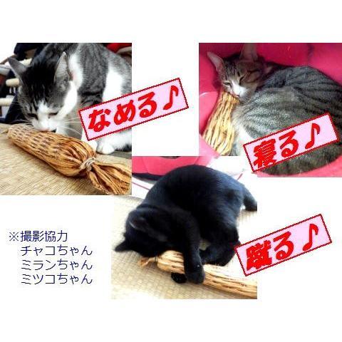 猫 ネコ ねこ キッカー おもちゃ マタタビ またたび 国産 天然 けりぐるみ ケリケリ わら納豆 (わらニャッ豆)(719) nyanpakusengen 06