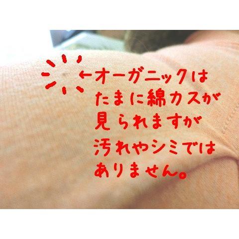 猫 キャット ネコ ねこ 術後 服 保護 傷 エリザベスカラー ウェア 術後着 なめ防止 脱毛 傷口 皮膚  伸縮 (ナメにゃいでレオタードオーガニック Lワイド)(419)|nyanpakusengen|05