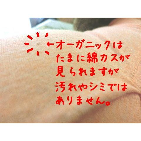 猫 キャット ネコ ねこ 術後 服 保護 傷防止 エリザベスカラー ウェア 術後着 なめ防止 脱毛 傷口 皮膚 避妊 伸縮 (ナメにゃいでレオタードオーガニック)|nyanpakusengen|05