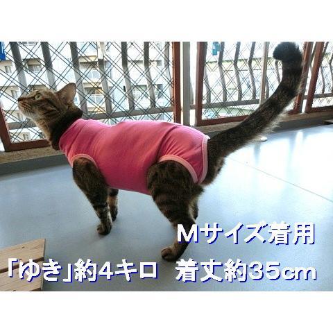 猫 キャット ネコ ねこ 術後 服 保護服 傷防止 エリザベスカラー 術後ウェア 術後着 なめ防止 脱毛 傷口保護 皮膚 避妊 伸縮 (ナメにゃいでレオタード) nyanpakusengen 10