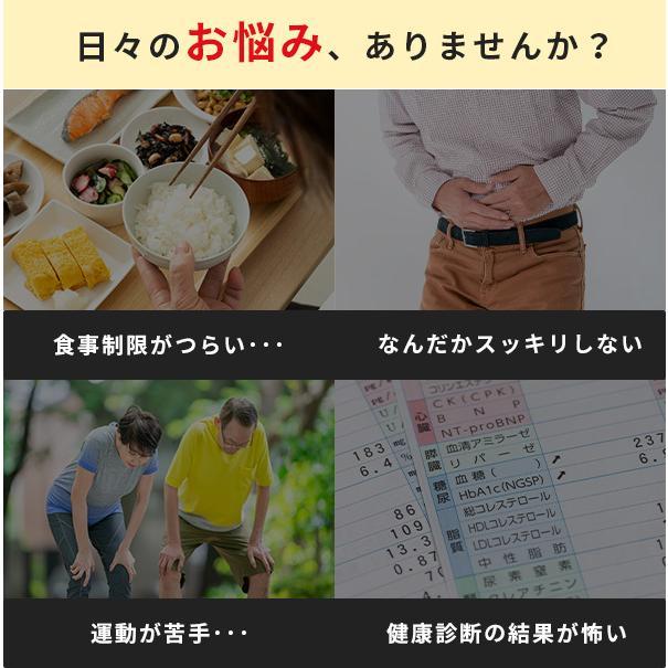 菊芋 サプリ 前田の菊芋 30包入 公式 サラっと溶ける粉タイプ イヌリン 糖対策 oasiskikuimo-store 03