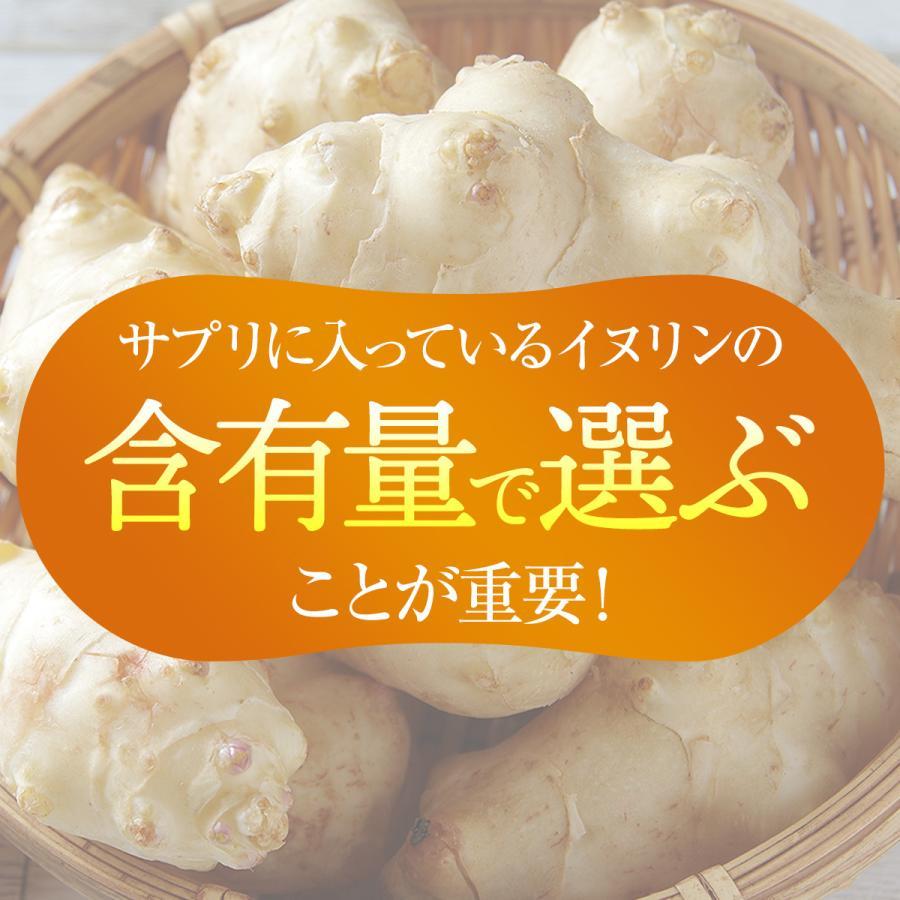 菊芋 サプリ 前田の菊芋 30包入 公式 サラっと溶ける粉タイプ イヌリン 糖対策 oasiskikuimo-store 07