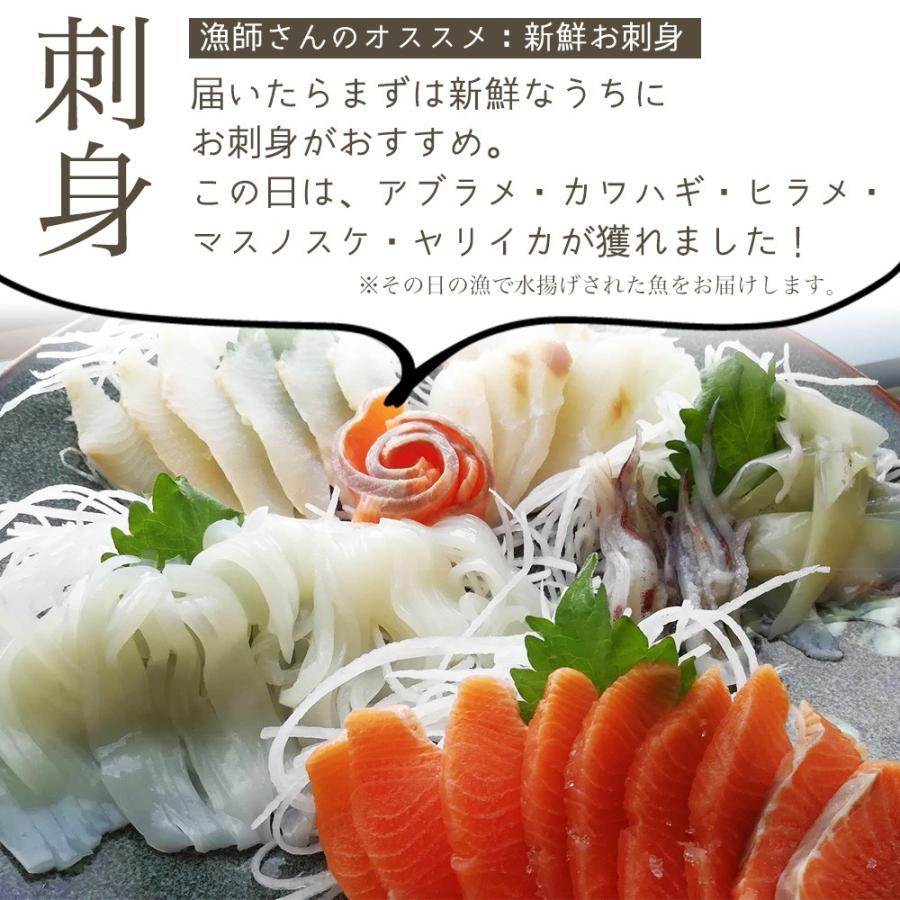 朝獲れ 鮮魚 セット 青森 尾駮漁港 3000円 贈り物 お歳暮 魚詰合せ|obuchisengyodan|05