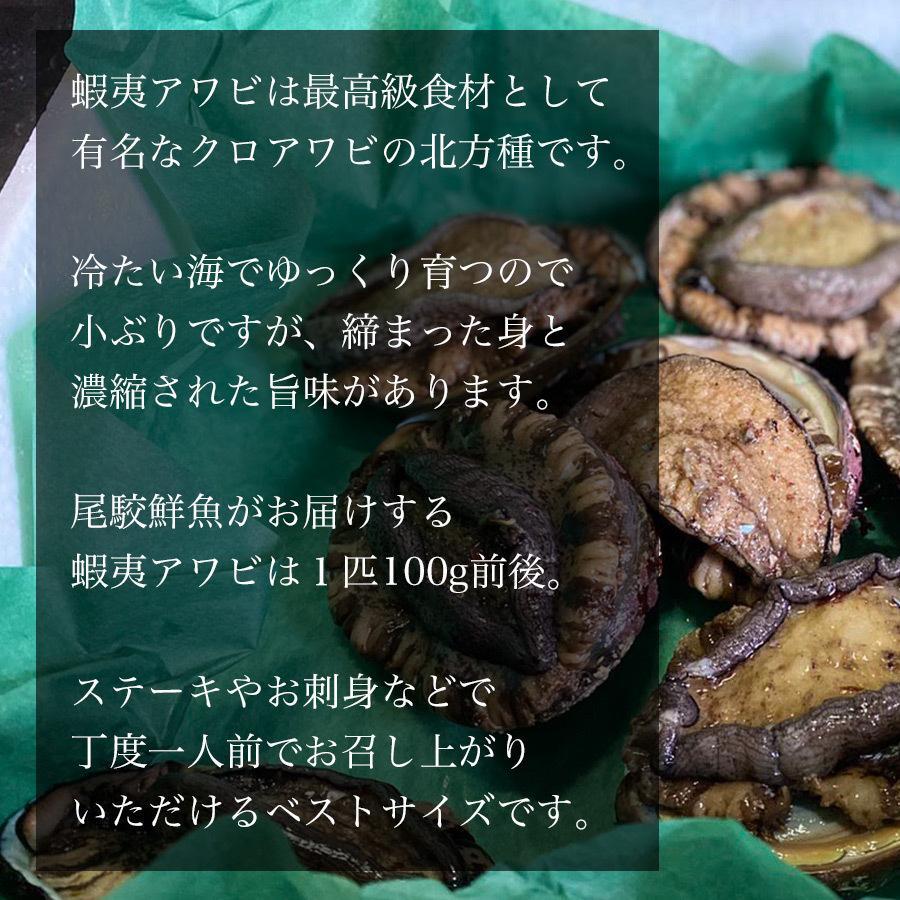 天然 蝦夷アワビ 1kg 冷凍 送料無料 青森産 エゾアワビ お刺身用 贈り物 お歳暮 あわび 鮑 正月 高級食材 ギフト 熨斗対応|obuchisengyodan|04