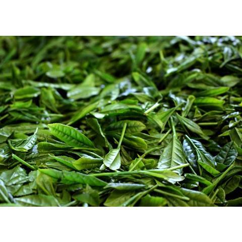 基山の翠 100g /極上煎茶/新茶/煎茶/茶葉/緑茶/日本茶/お茶|ocha-sonobe|03