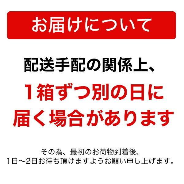 炭酸水 クオス 500ml×120本 最安値に挑戦 まとめ買い マツコ&有吉TVで紹介 九州 日田産 強炭酸水 おおいたいいものうまいもの市_炭酸水|odin|07