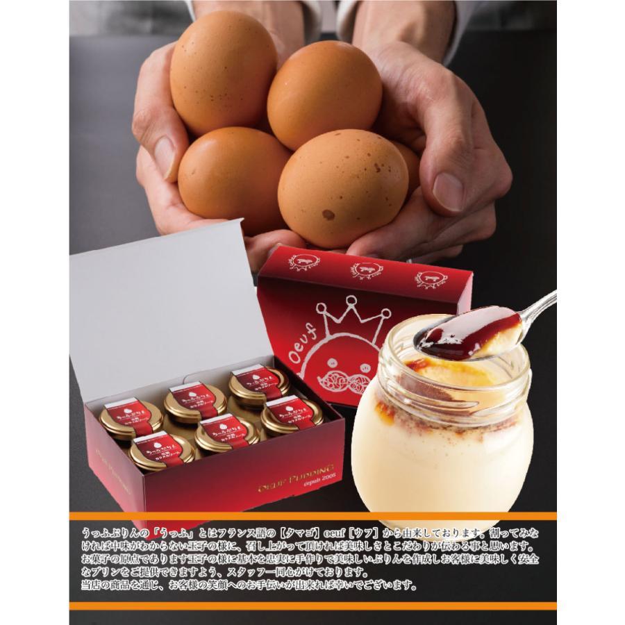 従来のプリンを上回る極旨味プリン誕生 うっふぷりんプリュス 5個セット|oeuf-pudding2|12