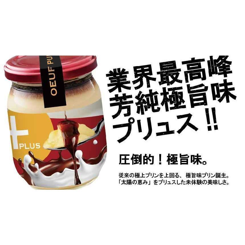 従来のプリンを上回る極旨味プリン誕生 うっふぷりんプリュス 5個セット|oeuf-pudding2|03