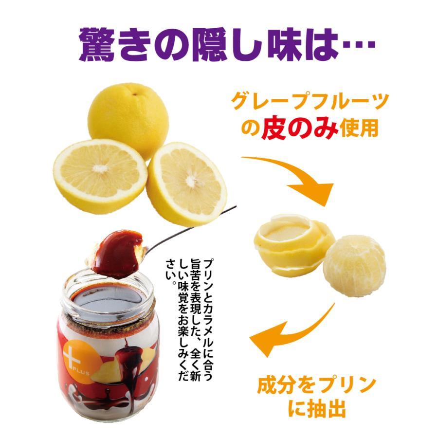 従来のプリンを上回る極旨味プリン誕生 うっふぷりんプリュス 5個セット|oeuf-pudding2|05