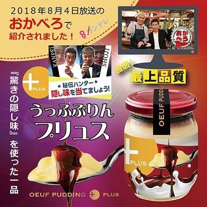 従来のプリンを上回る極旨味プリン誕生 うっふぷりんプリュス 5個セット|oeuf-pudding2|07