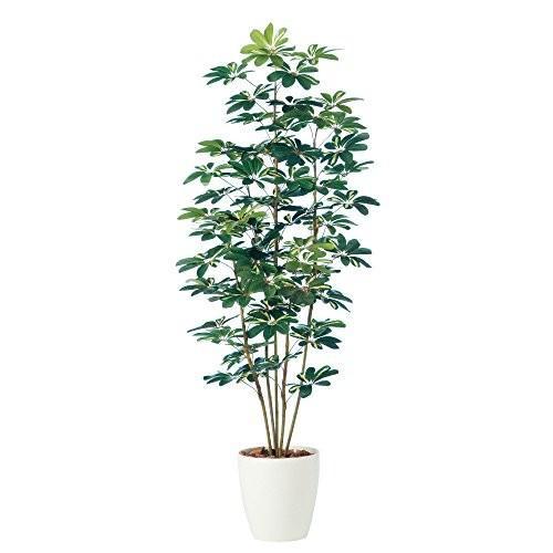 プラス 人工樹木 人工樹木 シェフレラ NO125J