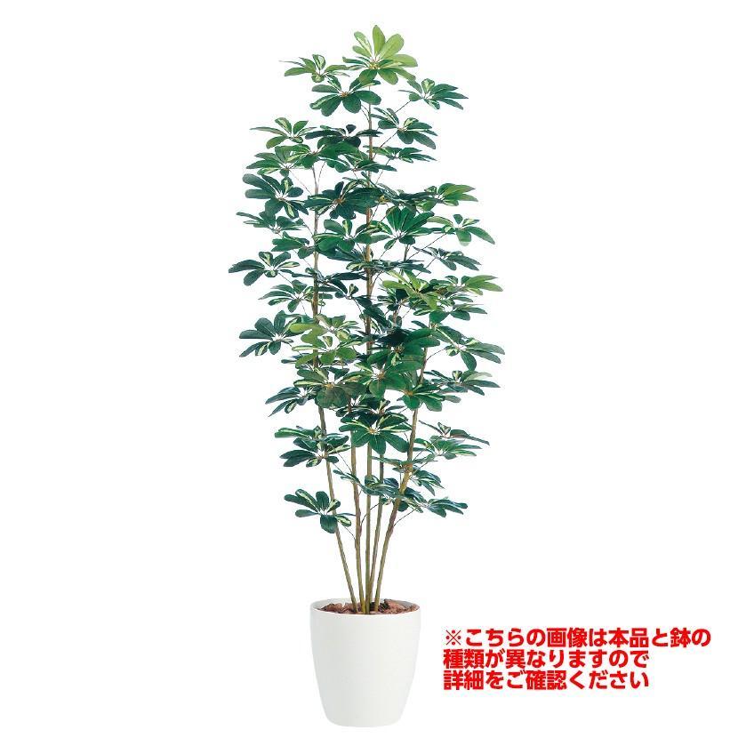 観葉植物 人工 樹木 シェフレラ 高さ1800mm Lサイズ 鉢:懸崖9号