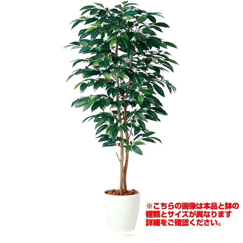 観葉植物 人工 樹木 コーヒーデュアル 高さ2000mm Lサイズ 鉢:懸崖9号