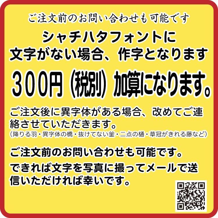 本体名入れ可能 シャチハタ Vivo シャチハタ ネーム印 ネーム9のハイブランド品 9.5ミリ印面 送料無料|ogawahan|06