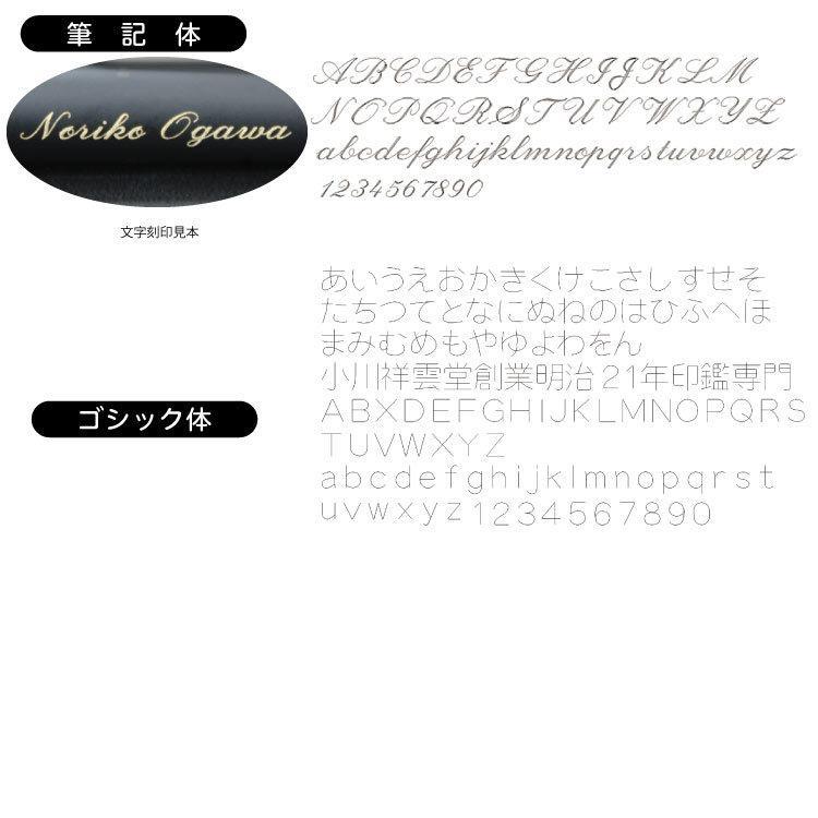 【名入れ】フリクションボール3 ビズ LFBT-5SEF|ogawahan|07