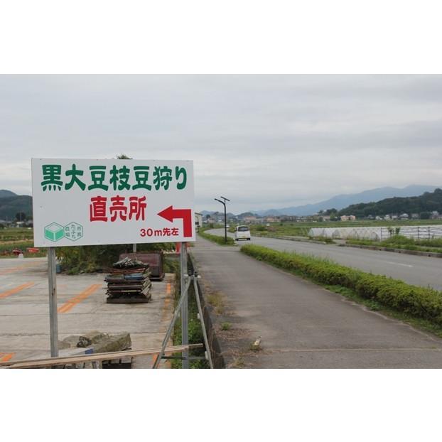 丹波篠山産黒枝豆1kg さやのみ(篠山市認定販売所たぶち農場)※収穫日に出荷いたします|ohatama|06