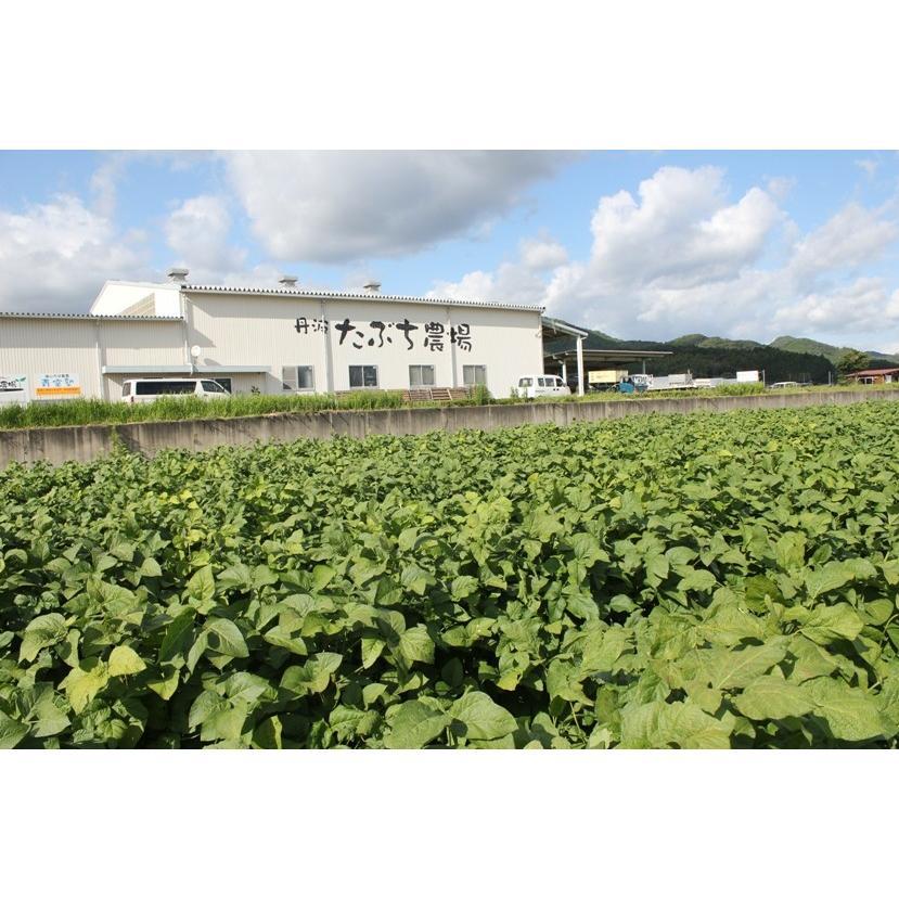 丹波篠山産黒枝豆1kg さやのみ(篠山市認定販売所たぶち農場)※収穫日に出荷いたします|ohatama|08
