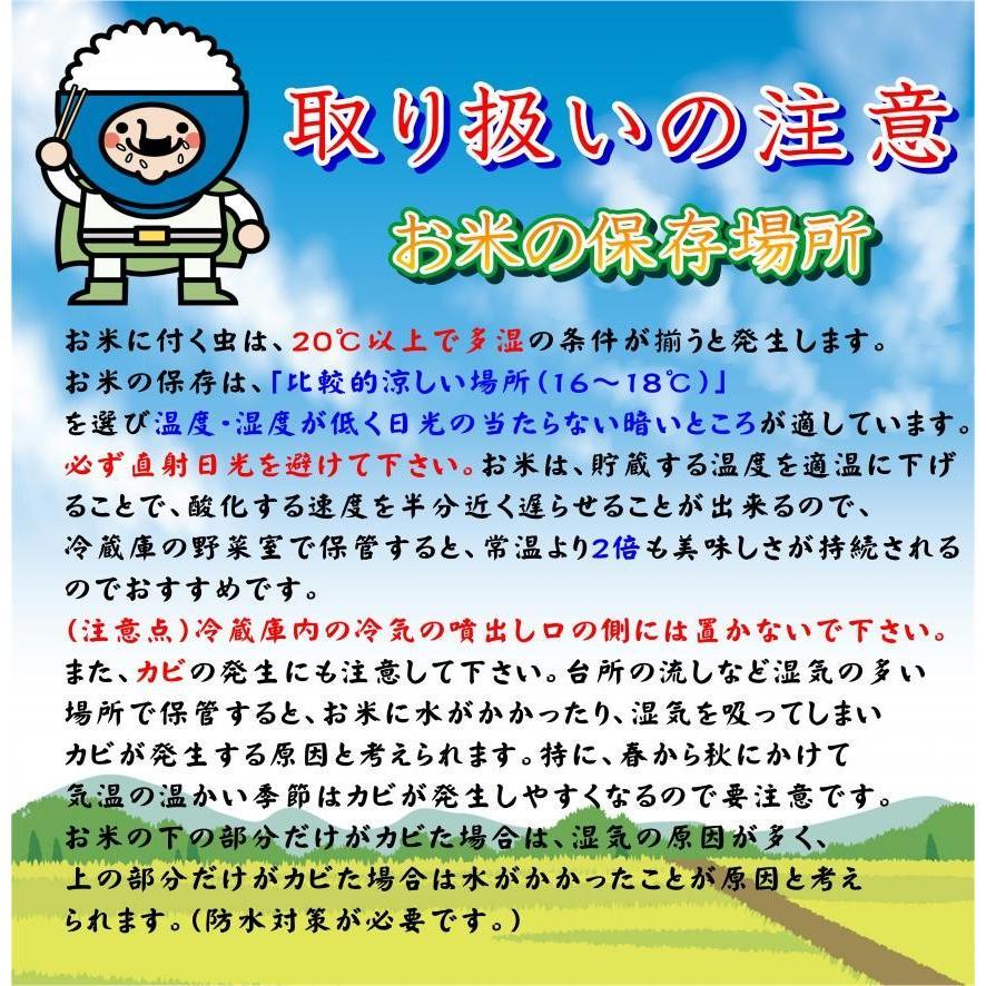 新米 2年産 コシヒカリ お米 米 白米 安い 美味しい 福島県産 送料無料 福島県中通り産コシヒカリ10kg|ohga-syouten|03