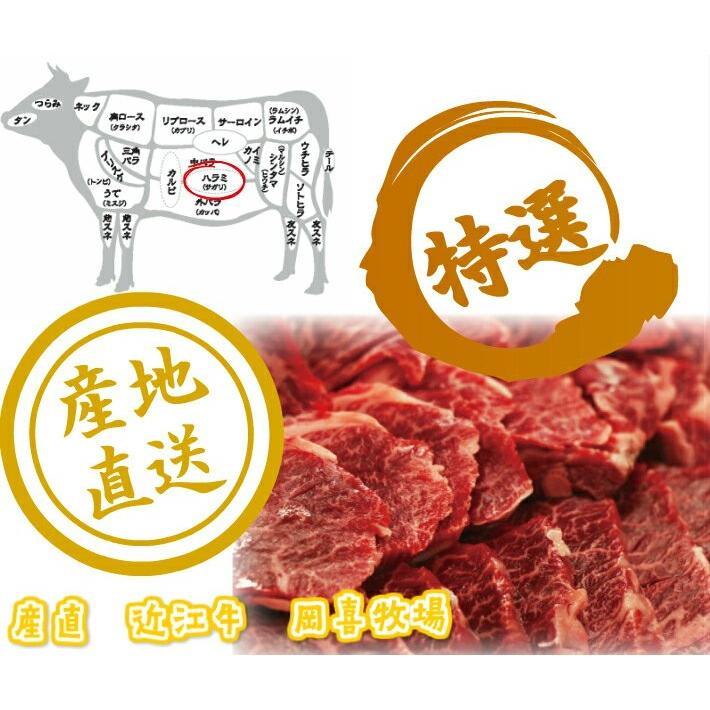 【焼肉】焼肉でも人気部位近江牛 ハラミ 300g【冷凍】|ohimiushi-okaki|03